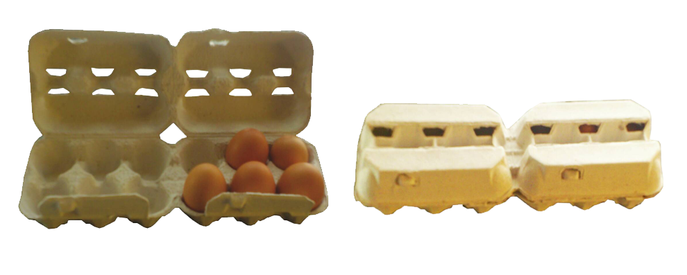 2 x 6 Egg Boxes <br/> Carries 12 eggs